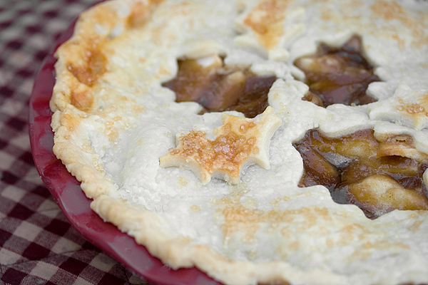 Classic Two-Crust Apple Pie - Seasons and Suppers