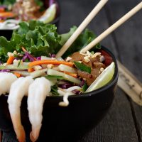Shrimp Roll Salad with Spicy Peanut Sauce