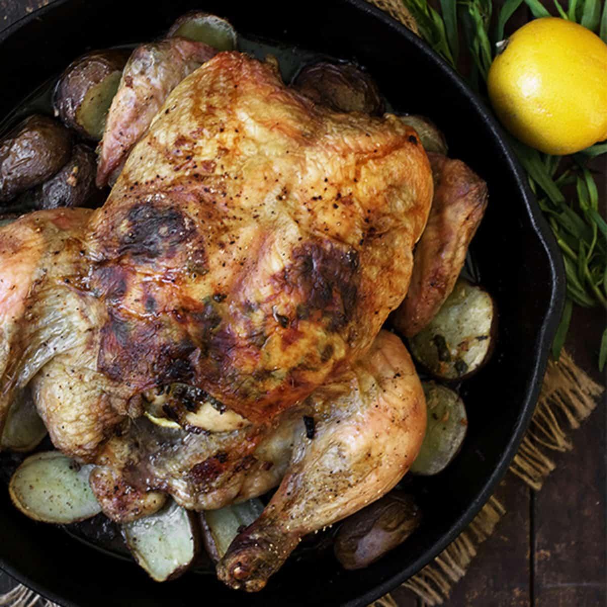 tarragon lemon roasted whole chicken in skillet