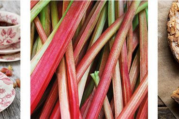 Delicious Rhubarb Recipes to Celebrate Spring