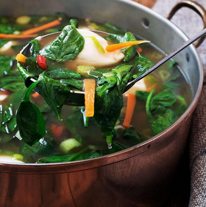 pork dumpling soup in soup pot