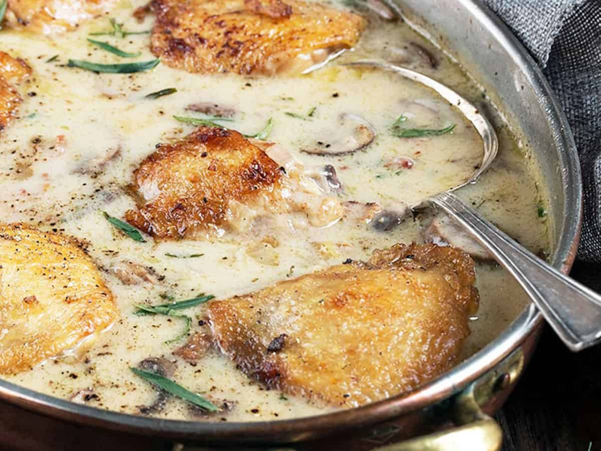 French chicken with creamy sauce in pan with spoon
