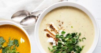 parsnip soup and carrot soup on white background