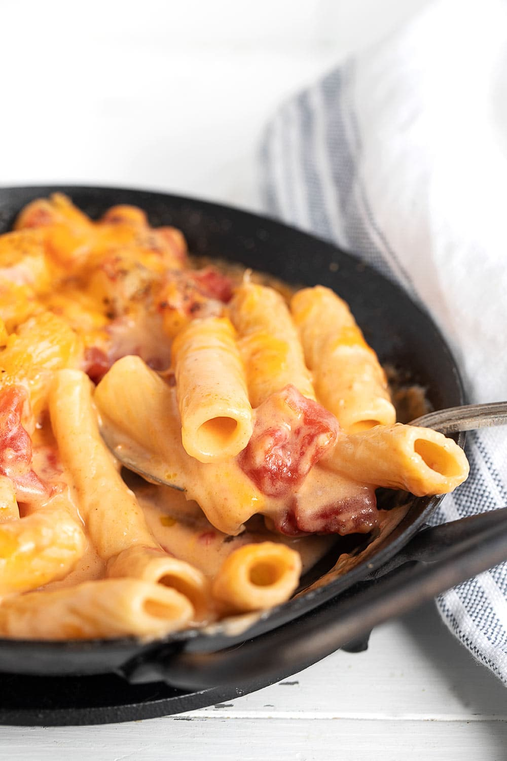 pasta with cheese sauce and tomatoes